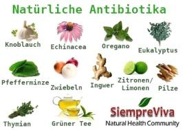 natuerliche-antibioka1