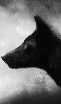 """Der schwarze Wolf steht für """"das Schlechte"""""""