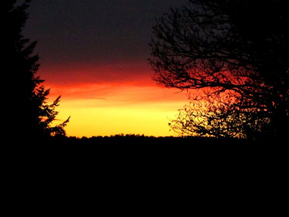 schwarz-rot-gold Sonnenaufgang